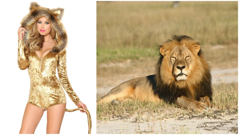 A portion of proceeds from the sale of Yandy.com's sexy Cecil the Lion costume ($118.95), created as an homage to the slain lion, at right in an undated file photo, will go to the World Wildlife Fund.