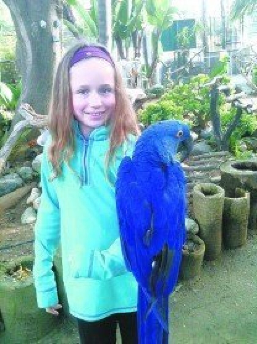 Jessica Smith holding a Hyacinth Macaw. Courtesy photos