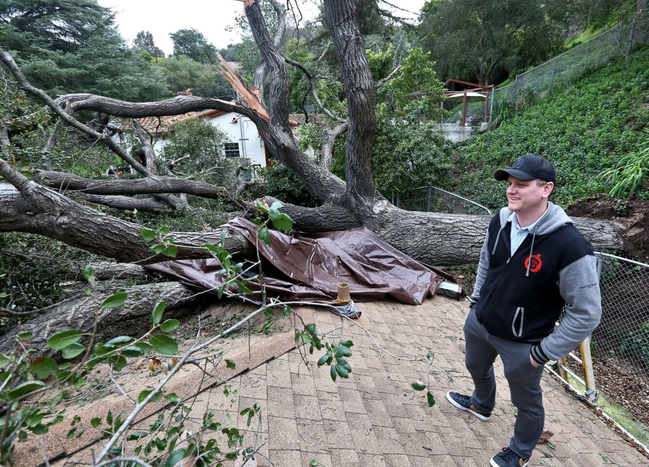 Photo Gallery: Large oak destroys home