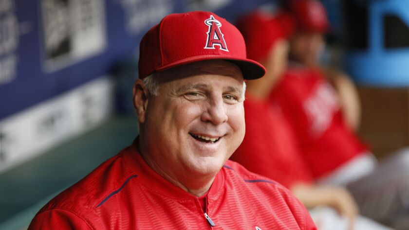 Mike Scioscia had a successful 19-year run as Angels manager, but none of the eight teams hiring this winter interviewed him.