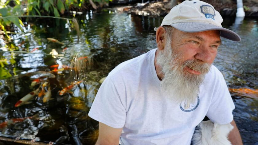 Jerry Myers runs a koi sanctuary at his ranch in Lakeside. Over the past three years, he has rescued and re-homed nearly 3,000 San Diego County koi.