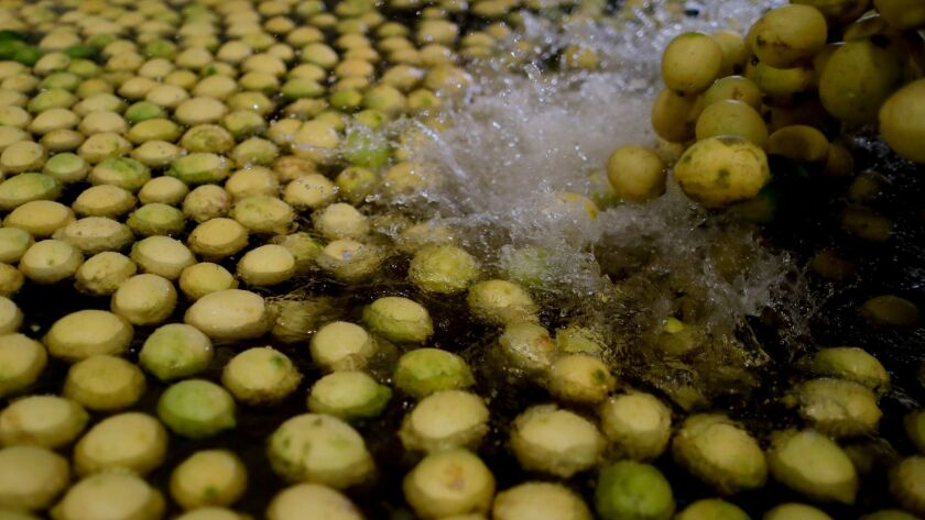 Lemons are washed at a plant in Tucuman, Argentina.