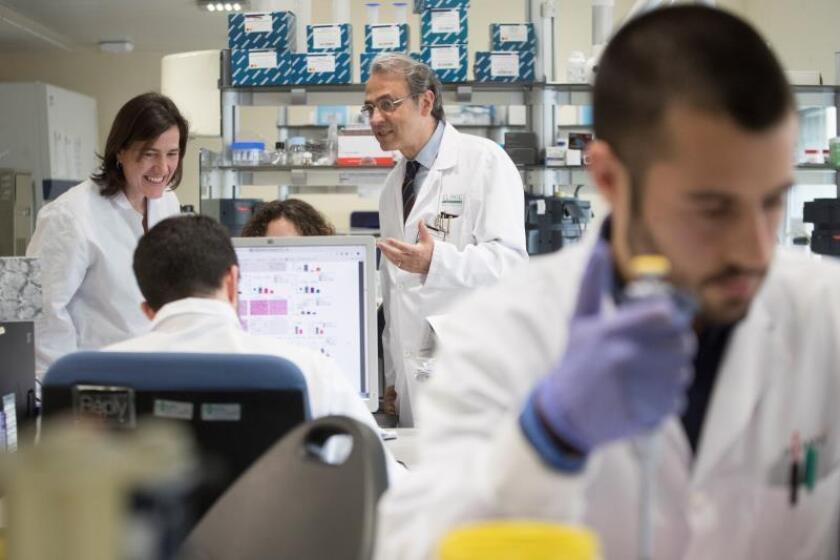 Investigadores en Pittsburg desarrollan hígados en miniatura para estudios