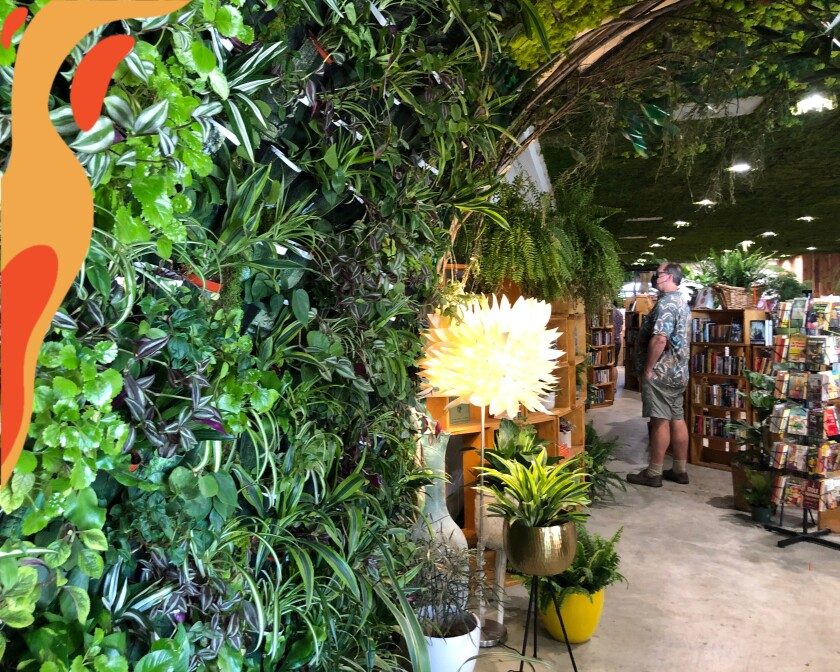 Lost Books in Montrose is filled with plants and books.