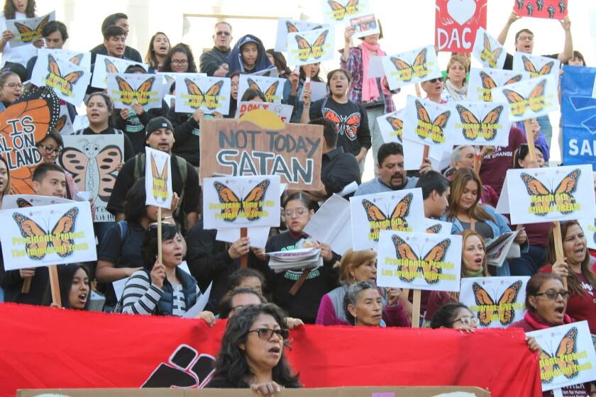 Salen a protestar por DACA: Impacto económico le dolería a EU