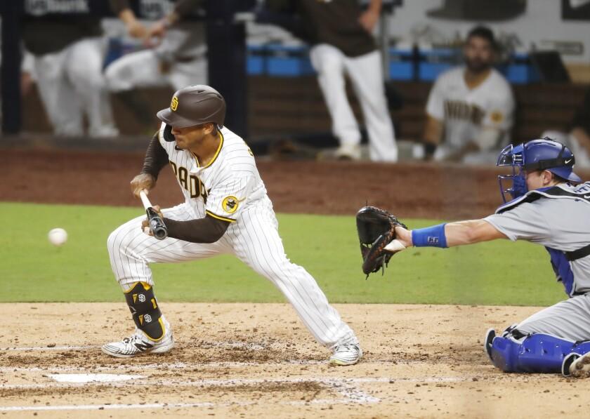 Trent Grisham bunts against the Los Angeles Dodgers last September.