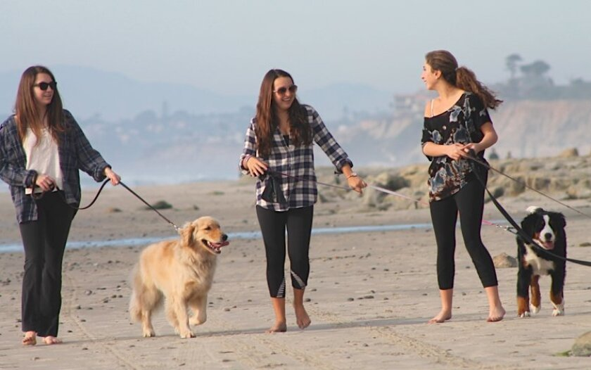 It was a dog day afternoon Thursday in Del Mar.
