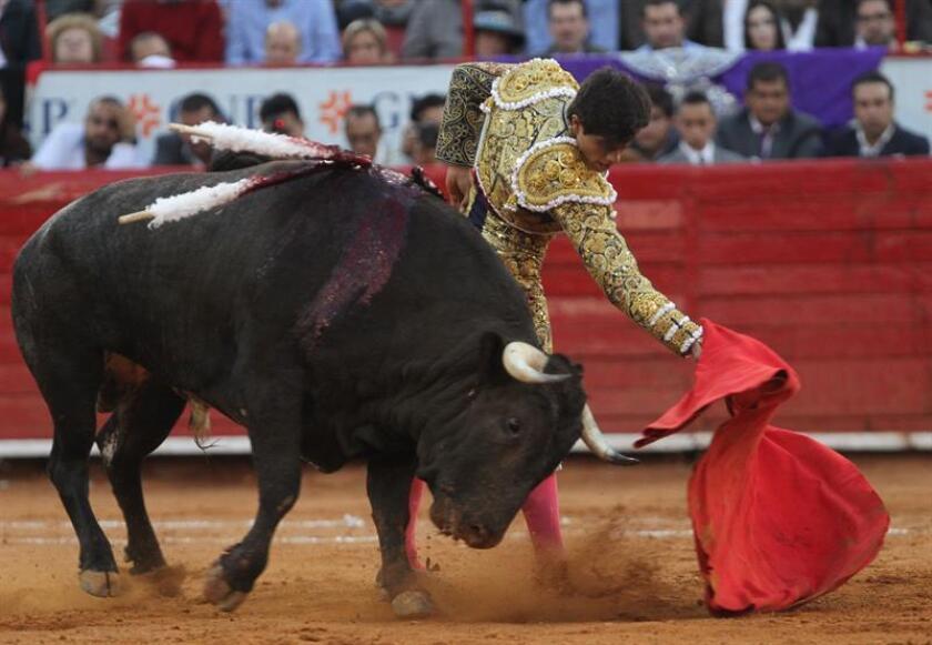 Luis David Adame, torero mexicano. EFE/Archivo
