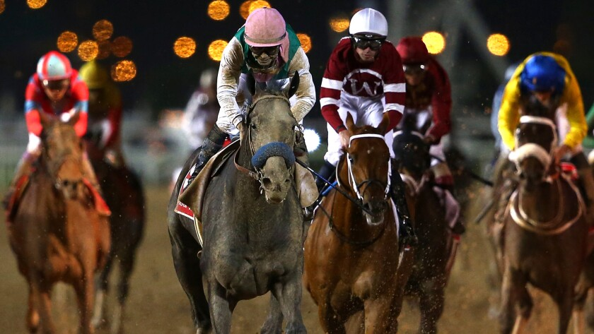 Jockey Mike Smith guides Arrogate toward the finish line in the Dubai World Cup on Saturday. (Francois Nel / Getty Images)