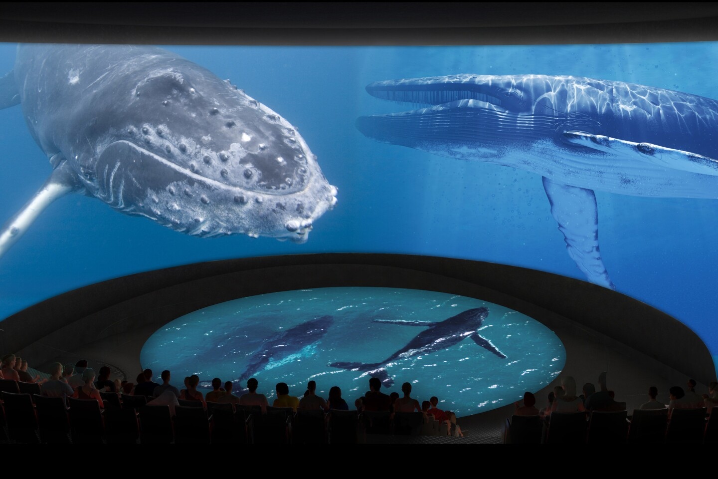 """An artist rendering shows the 300-seat """"immersive theater"""" with a 130-foot-long curved screen, part of the planned $53-million expansion of The Aquarium of the Pacific."""