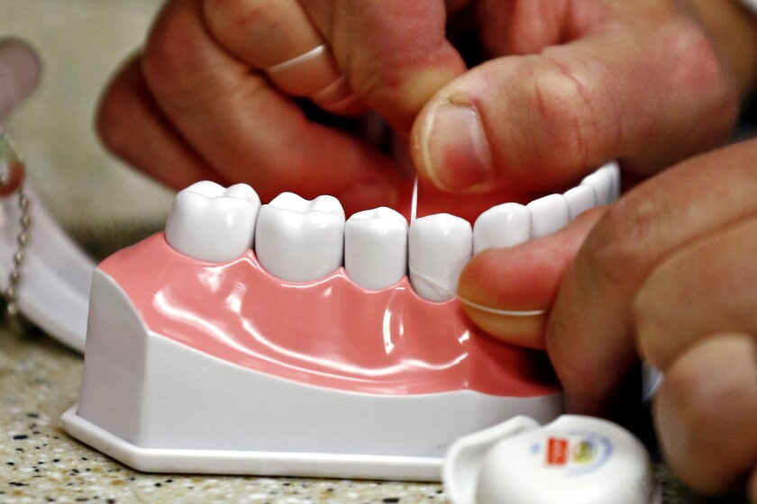 Flossing is demonstrated on an oversized model of human teeth