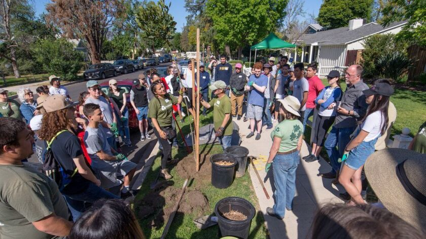 VAN NUYS, CA-- At the beginning of each planting event, TreePeople staff plants a demonstration tre