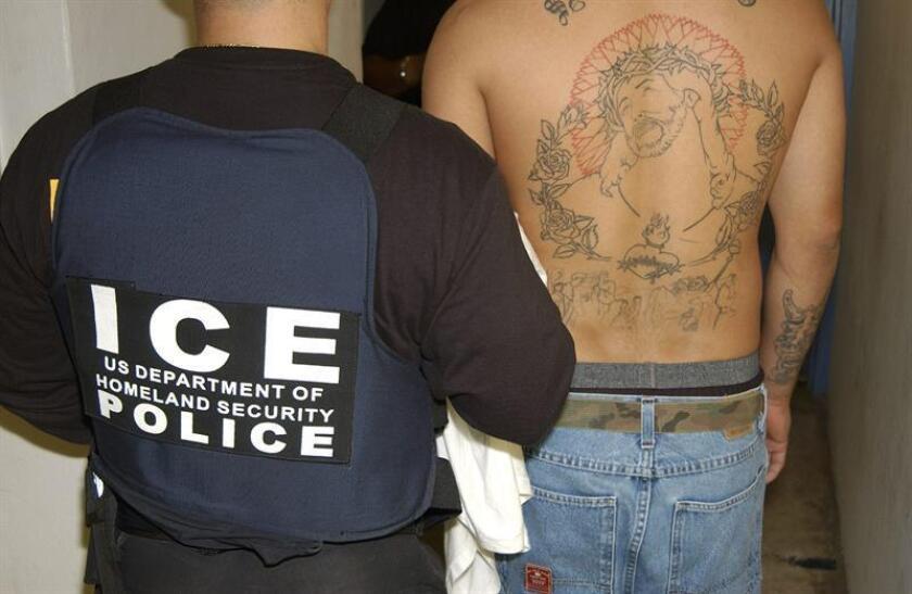 Imputan delitos criminales a 24 pandilleros MS-13 en Maryland