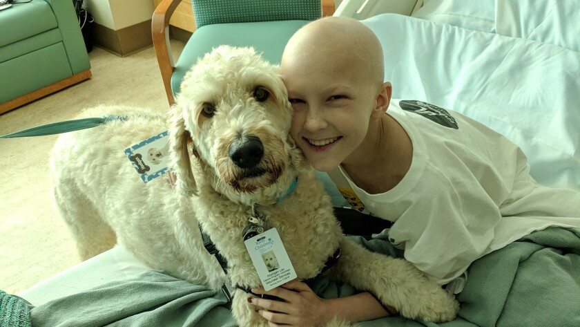 Keely, the daughter of Mike Hess, owner of Mike Hess Brewing, was diagnosed with a rare form of bone cancer.