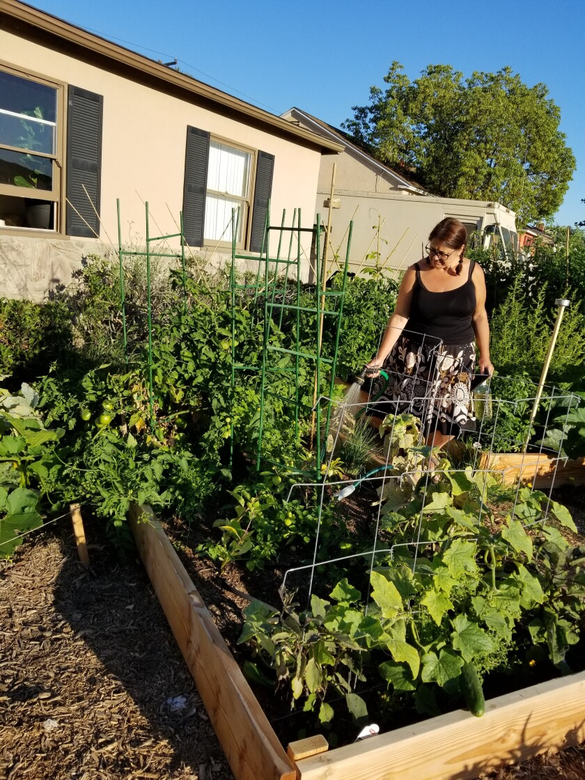 Christine Cooke needed something to occupy her time after her job ended in March. She found solace in her garden.