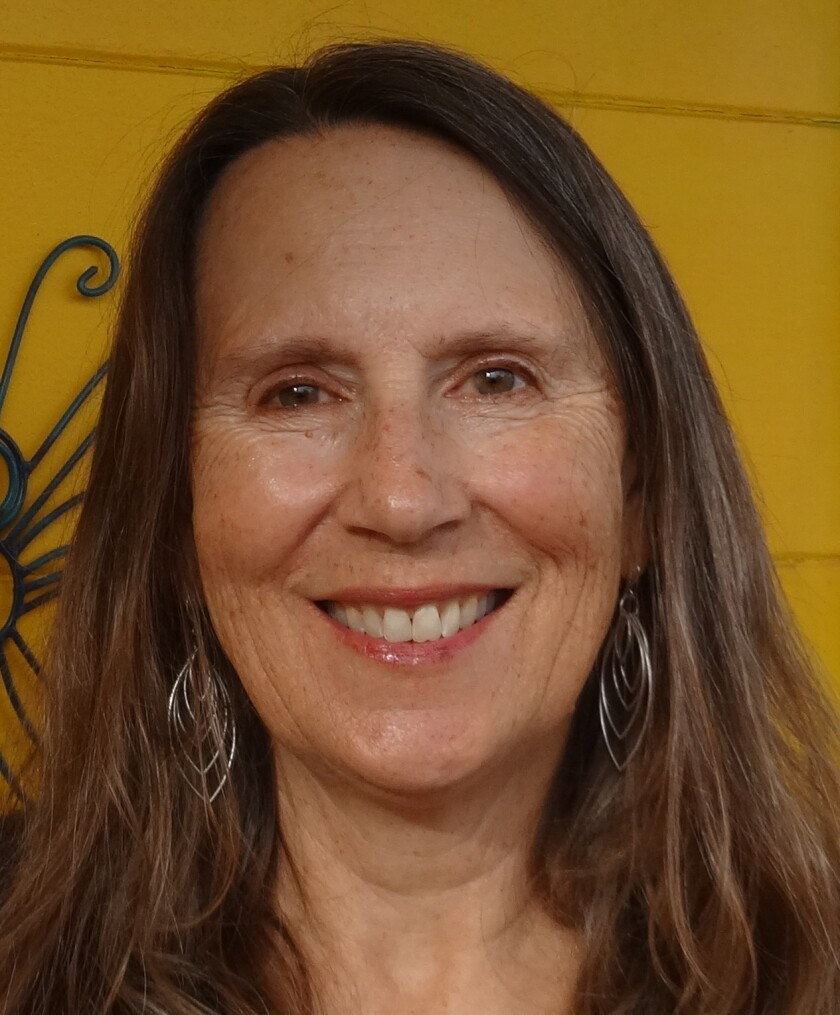 Karin Zirk is a writer and an environmentalist who has lived in Pacific Beach for about three decades.