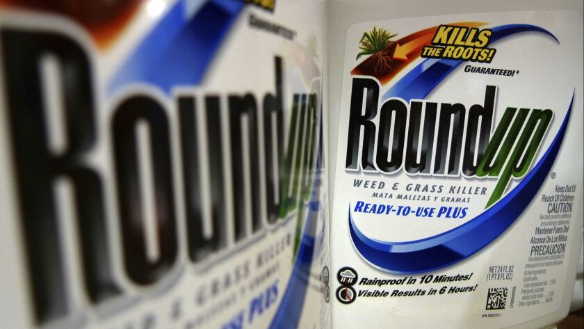 FILE - In this June 28, 2011, file photo, bottles of Roundup herbicide, a product of Monsanto, are d