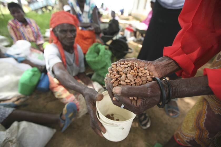 """FILE - In this Thursday, Jan. 15, 2009 file photo, village women receive aid from the charity organisation, Oxfam International, at a distribution centre in Chirumhanzi about 250 Kilometers South east of Harare. The United Nations says about half of Zimbabwe's population faces severe hunger amid a devastating drought and economic collapse. The World Food Program notes a """"vicious cycle of skyrocketing malnutrition that's hitting women and children hardest."""" More than 7 million people overall are in need. (AP Photo/Tsvangirayi Mukwazhi, File)"""