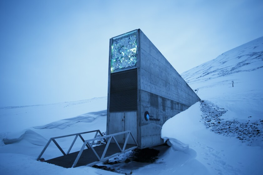 """This is a March 2, 2016, file photo of an exterior view of the Svalbard Global Seed Vault, the secure seed bank on Svalbard, Norway. Nearly 10 years after a """"doomsday"""" seed vault opened on an Arctic island off Norway, some 50,000 new samples from seed collections ranging from India, the Middle East, northern Africa and Europe to the U.S. and Mexico, have been deposited in the world's largest repository, built to safeguard against wars or natural disasters wiping out global food crops."""