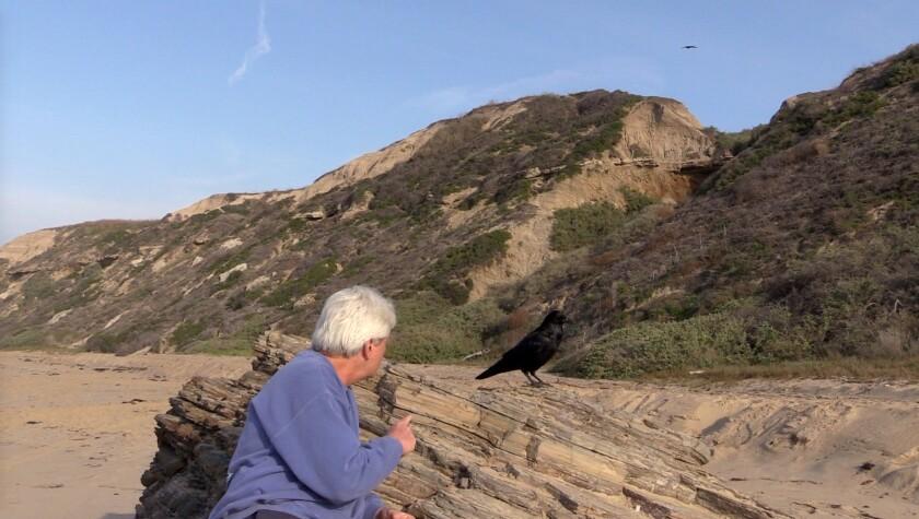 Raven Rick and Mrs Moro