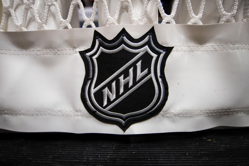 NHL logo on the back of a goal net.