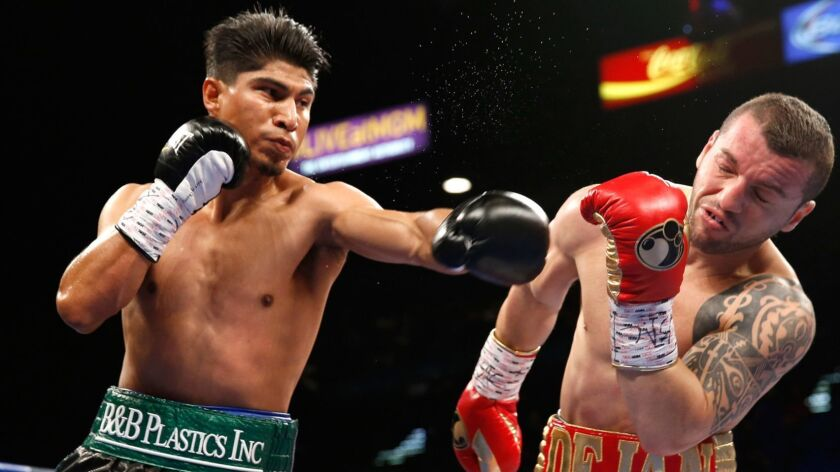 Mikey Garcia connects on Dejan Zlaticanin during their WBC lightweight title fight on Jan. 28, 2017 in Las Vegas.