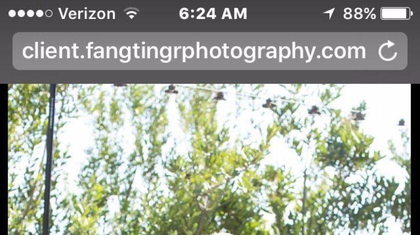 sd-1498777908-43amdvbdbe-snap-image