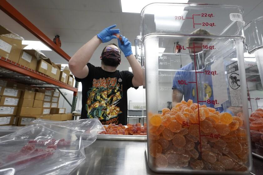 Bill Mathis inspecciona caramelos masticables de marihuana en Hazel Park, Michigan