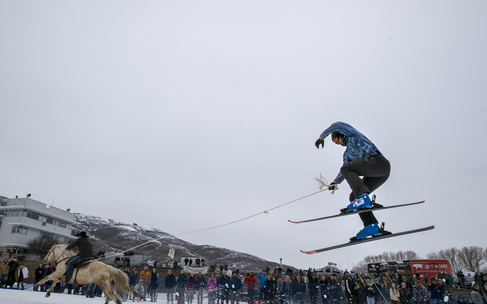 Skijoring features riders pulling skiers through an obstacle course at full speed.