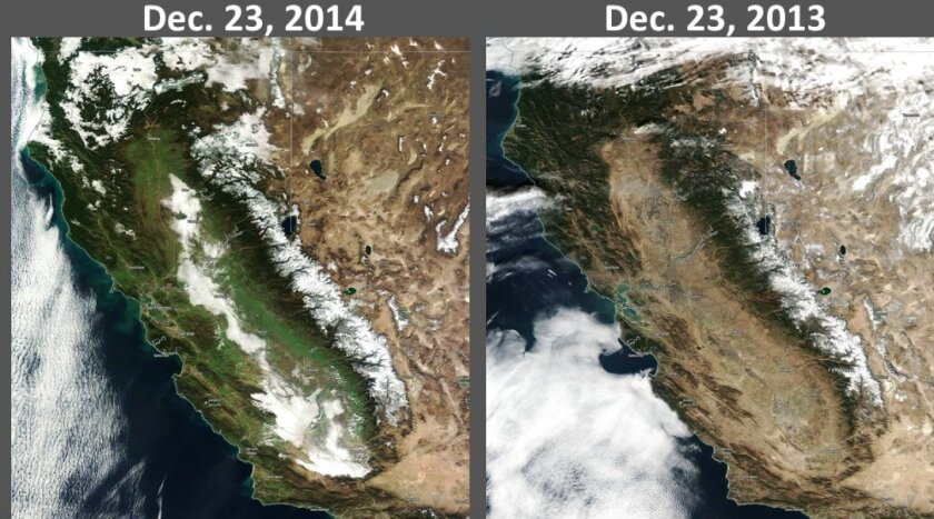 The heavy rain the state has received in December has spurred the growth of vegetation across California.