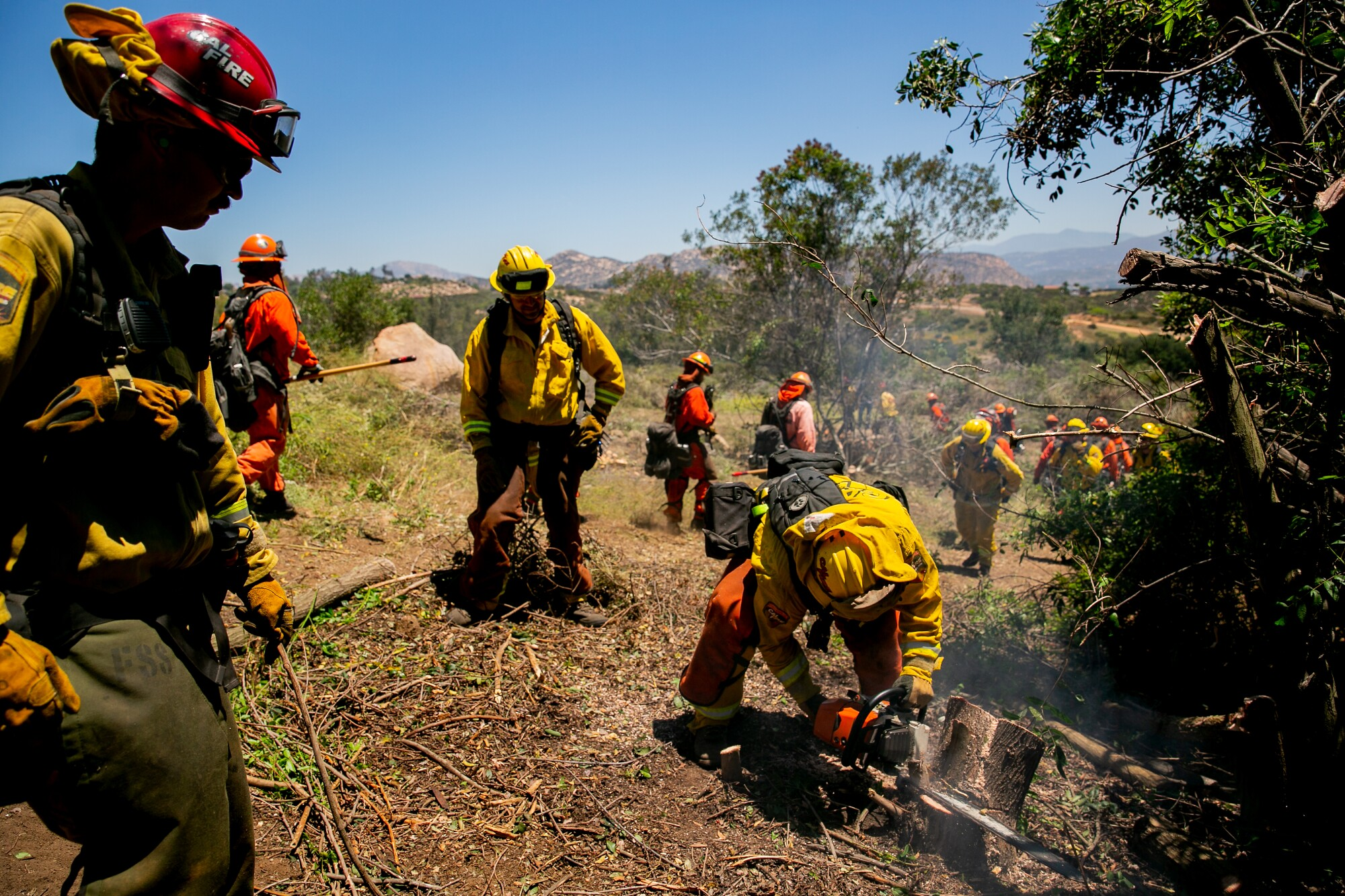 Cal Fire seasonal firefighters work alongside California Department of Corrections firefighters to create fuel breaks around homes while also re-certifying their chainsaw training on June 28, 2019 in Crest, California.