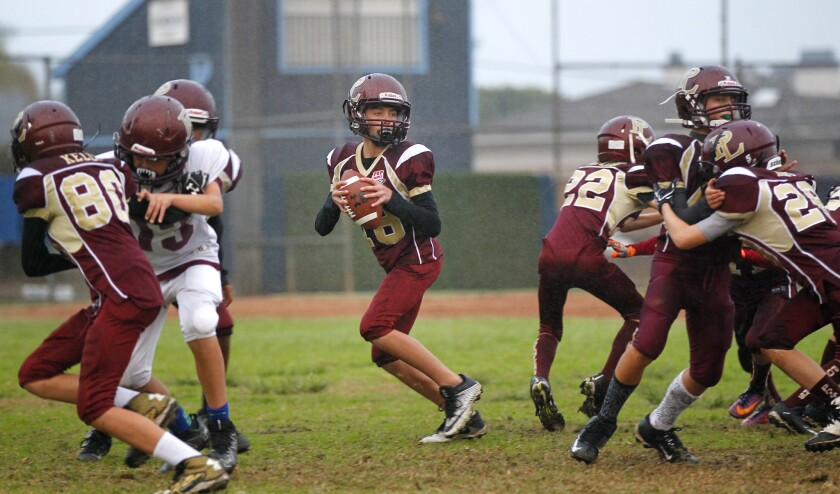 No scientific link between youth football and CTE - The San