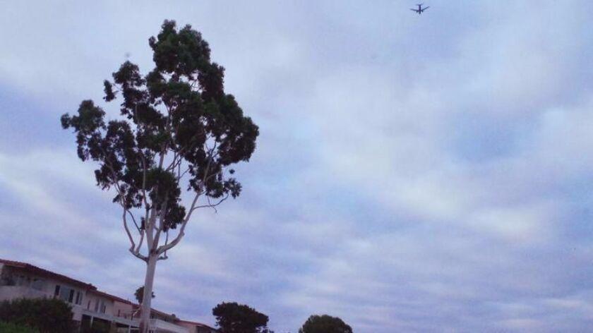 JWA takeoff