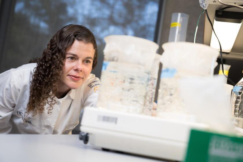 UC San Diego bioengineering professor Karen Christman.