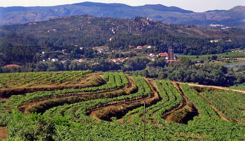 Pazo San Mauro Winery