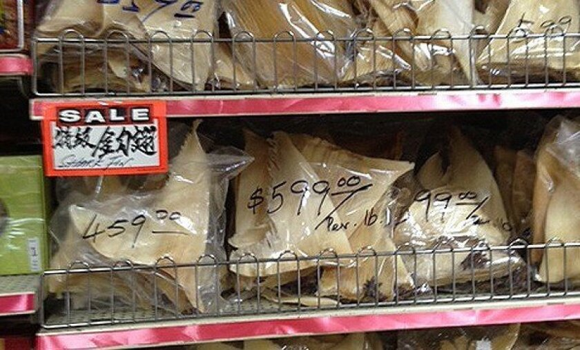 Shark fins for sale in Los Angeles' Chinatown at $600 a pound. As of Monday they will be illegal in California.
