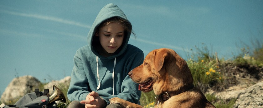 Review: 'White God' gives the child-dog fable a thrilling twist