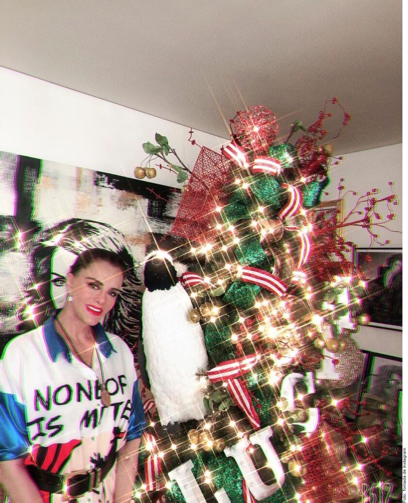 Encienden famosos la Navidad_952699.JPG