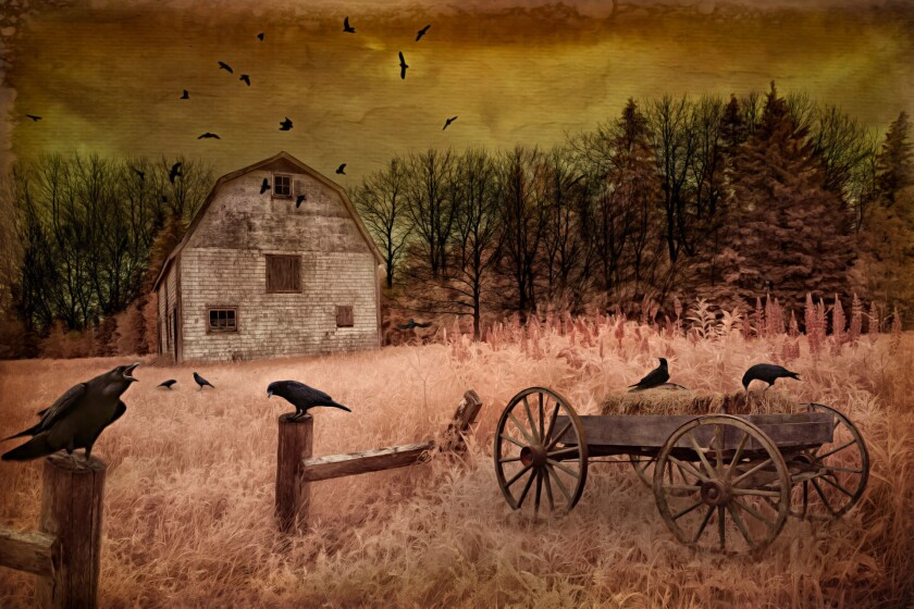 The Crow Show at The Studio Door opens Feb. 3 and runs until Feb. 26. Pictured is Raven's Last Call by Michele McCain, one of the 2015 Best in Show artworks. (Courtesy photo)