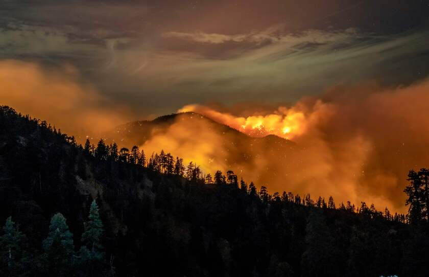A wildfire seen from a distance