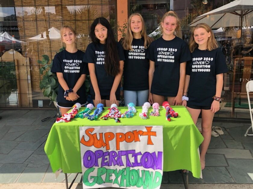 La Jolla-based Troop 3869 Girl Scouts Charly Fay, Alexis Zecha, Tessa Costanza, Chayse Teeple and Samantha Gans raise money and awareness for Operation Greyhound at La Jolla Art & Wine Festival. Not pictured: Scouts Brigette Broms and Daphne Mayers.