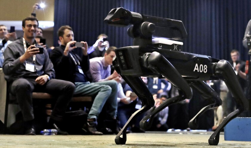In this Thursday, May 24, 2018, photo, a Boston Dynamics SpotMini robot is walks through a conference room during a robotics summit in Boston.