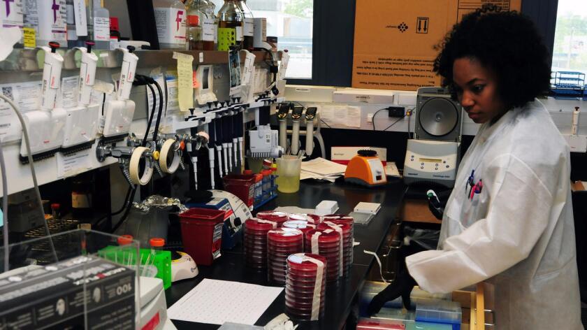 La investigadora científica Rosslyn Mayback fue parte del equipo que identificó la cepa de la bacteria E. Coli que contiene un gen que podría extender la resistencia a los antibióticos (Walter Reed, Army Institute of Research).
