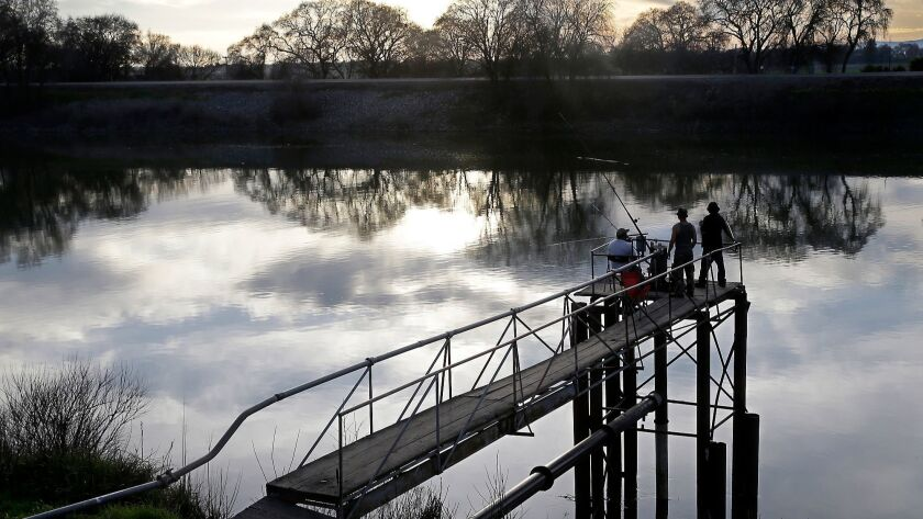 FILE- In this Feb. 23, 2016 file photo, people try to catch fish along the Sacramento River in the S
