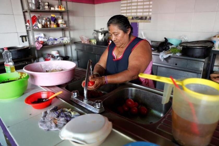 Fotografía de una mujer mientras realiza labores en la cocina. EFE/Archivo