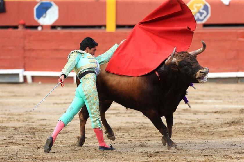 El torero peruano Juan Carlos Cubas lidia un toro hoy, domingo 04 de noviembre del de 2018, durante la primera corrida de la feria taurina del Señor de los Milagros celebrada en la plaza de Acho en Lima (Perú). EFE