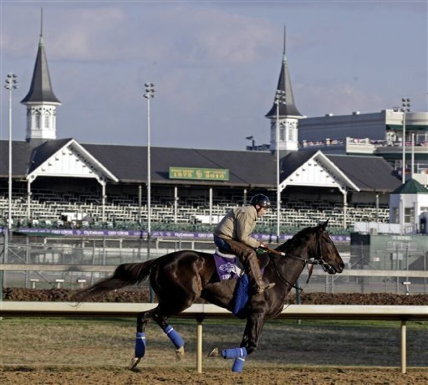 Zenyatta runs during a practice session for the Breeder's Cup horse race at Churchill Downs Thursday, Nov. 4, 2010, in Louisville, Ky. (AP Photo/David J. Phillip)