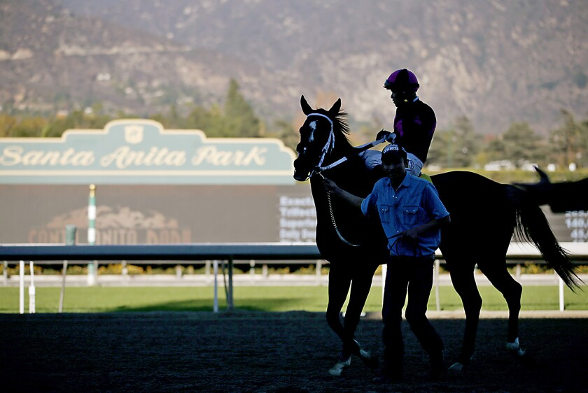 Horses died on Friday and Saturday at Santa Anita Park, the third and fourth since the new meeting started in late December.