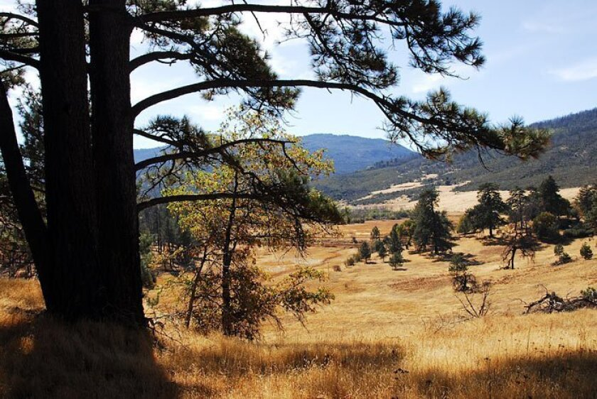 From the top of the Stonewall Mine Trail are sweeping views to the southwest into Cuyamaca Meadow Natural Preserve.