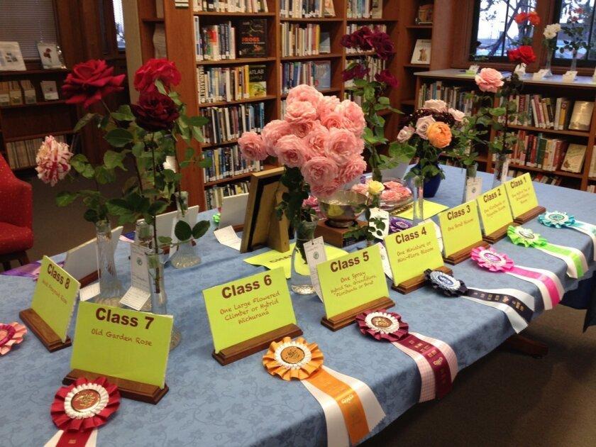 2015 rose winners. Courtesy photo
